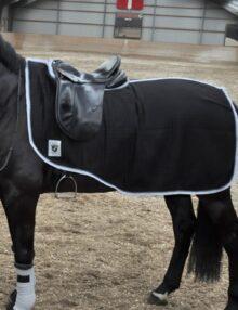9988-Ex.-Sheet-horse