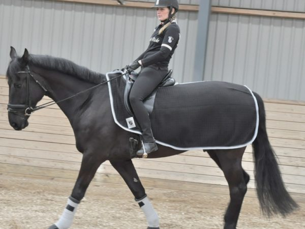 9988-Xth-Ex-Sheet-rider