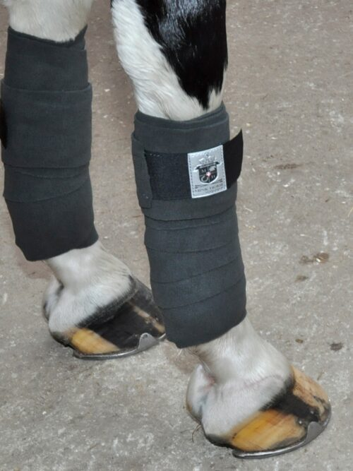 9991-Bandage-fleece-on-horse-I