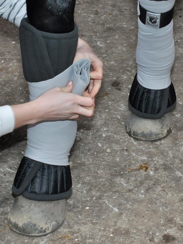 9993-Mm-Bandage-Pad-Bandage-elastic-mounting