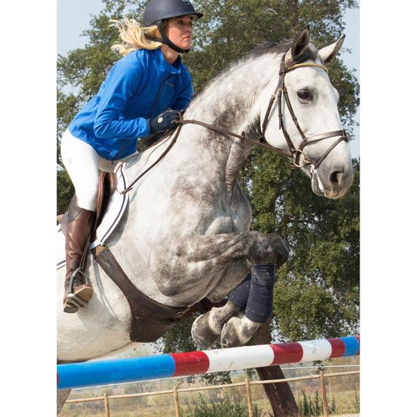 Mountain Horse Cruise Softshell jakke