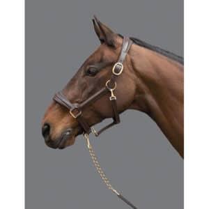 Mountain Horse Læder Grime