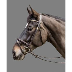 Mountain Horse Milton Trense