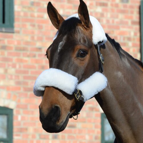 The WeatherBeeta Merino Sheepskin Headcollar Set 4 piece provides protection from rubbing and is ideal for travelling