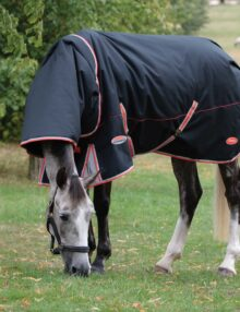 The WeatherBeeta ComFiTec Premier Therapy-Tec turnout is the perfect choice for your horse both pre and post workout or whilst your horse is relaxing in the paddock With a strong 1000 denier ballistic nylon outer shell with Teflon coating that is waterproof and breathable