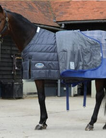 This 210 denier liner has a medium-lite 100g polyfill and fits into the WeatherBeeta ComFiTec Premier Trio Turnout Rug