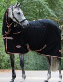 The WeatherBeeta Therapy-Tec Fleece Combo Neck is an ideal choice pre post exercise or whilst travelling Therapy Tec is designed to increase your horses muscle function to reduce the risk of injury whilst warming up by preparing the muscles for exercise