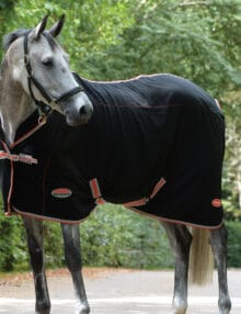 The WeatherBeeta Therapy-Tec Fleece Standard Neck is an ideal choice pre post exercise or whilst travelling Therapy Tec is designed to increase your horses muscle function to reduce the risk of injury whilst warming up by preparing the muscles for exercise